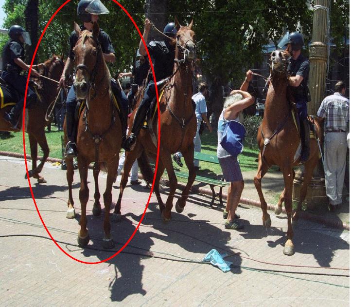 Una de las imágenes analizadas por el MPF en la causa.