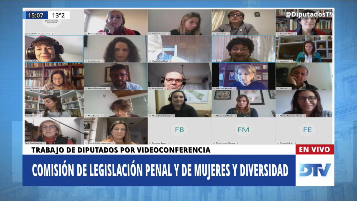 Foto: Comisiones de Legislación Penal y de Mujeres y Diversidad de la Cámara de Diputados de la Nación