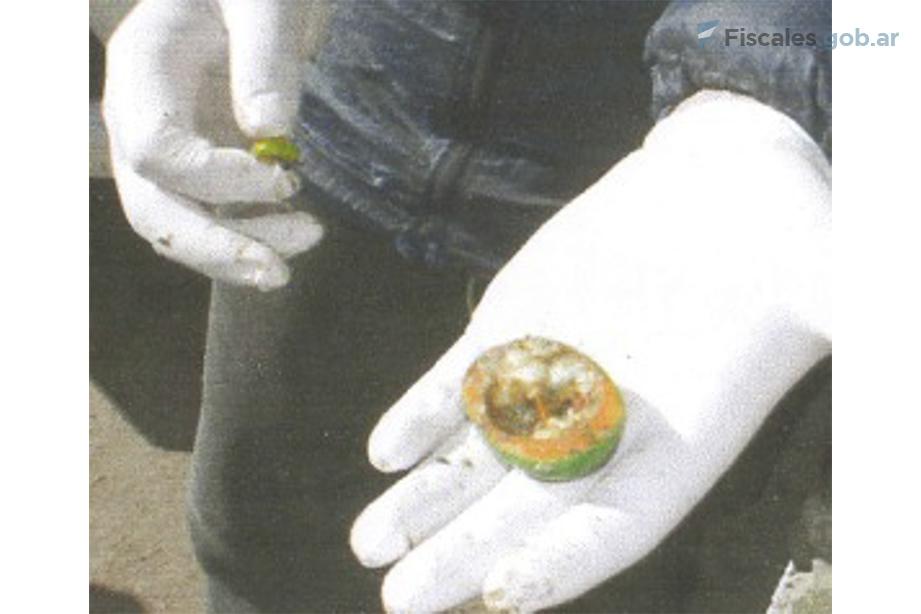 Un amuleto igual al que portaba Facundo -un regalo de su abuela- fue hallado en un montículo de basura durante el allanamiento al puesto de vigilancia de Teniente Origone.  - Foto: equipo fiscal